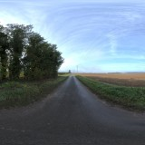 sunny open road with trees hdri map