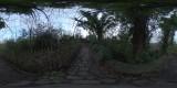 Cemetary_TreePath_Thumb